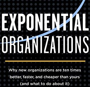 Salim Ismail et. al. – Exponential organizations